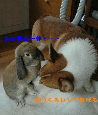 PHOTO147b.jpg