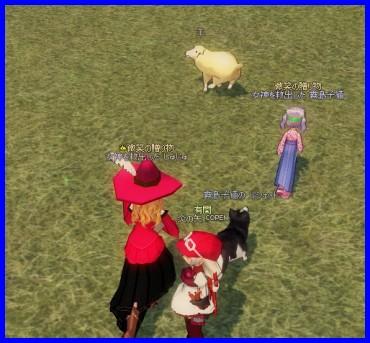 逃げる羊、追うしゅじゅ