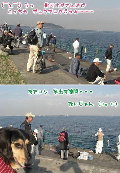 20071109_02