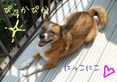 DSC_4770.jpg