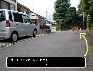 DSC_5224.jpg