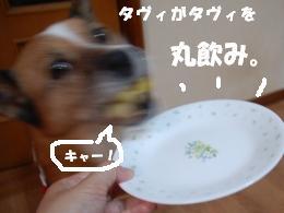 DSC_6174.jpg