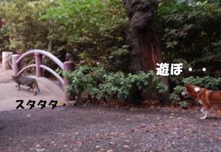 DSC_6647.jpg