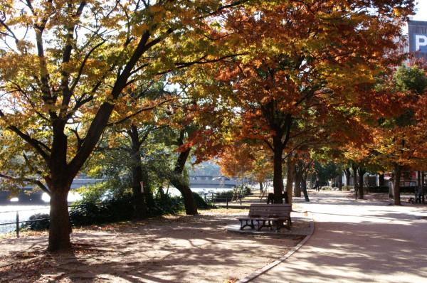 広島の紅葉