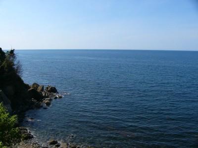 日本海の水平線