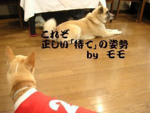 20061101003605.jpg