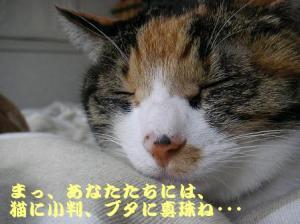 20070103231138.jpg