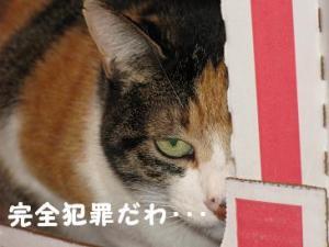 20070109000059.jpg