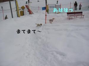 20070117003325.jpg