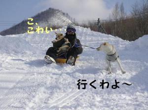20070208234327.jpg