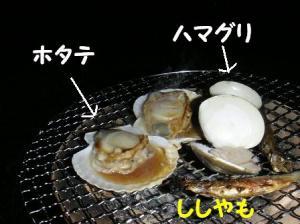 20071011011816.jpg