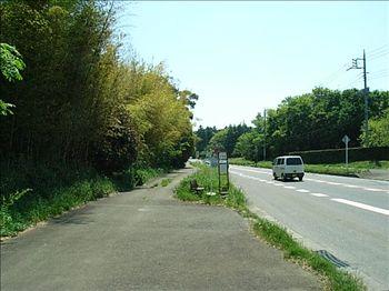 20070504_omonmajyounouchi1.jpg