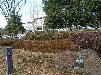 20071222_samuraiyasihi1.jpg