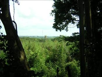 利根川遠望