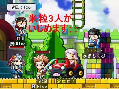 Maple0231.jpg