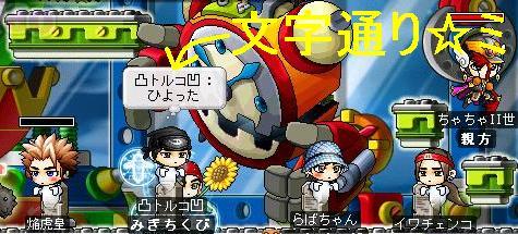 Maple0323.jpg