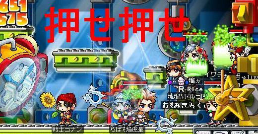 Maple0335.jpg
