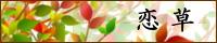 koi_bn.jpg