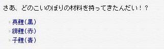 こいのぼりクエ (8)