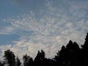 秋の空 いわし雲