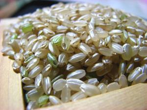 品種名 ひのひかり 18年度産玄米