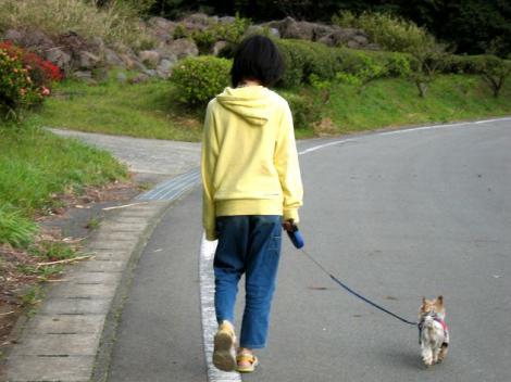 お姉ちゃんと散歩に行ったよ