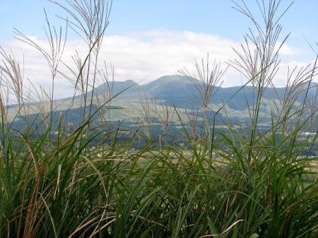 ススキと阿蘇の山