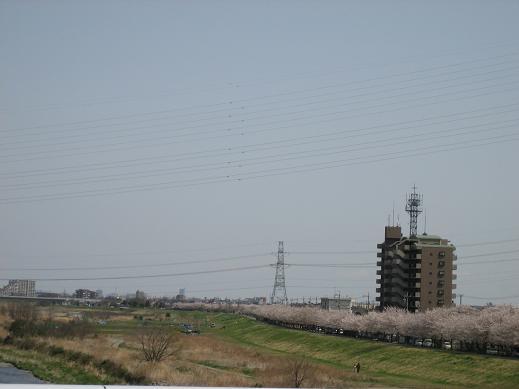 tamagawa1.jpg