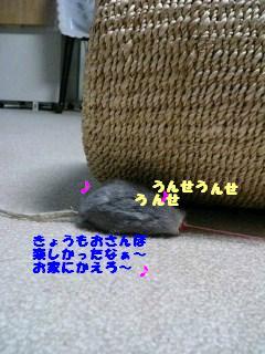 051010_2143~0003.jpg