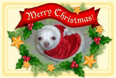 resize_christmas01.jpg