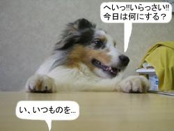 06032502.jpg