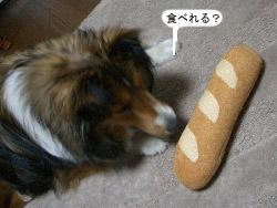 ご飯の後にフランスパンはいらないよ~