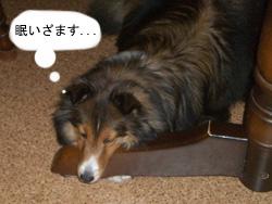 木製の枕とは、いつの時代の方?