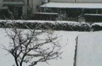 yuki20080203.jpg