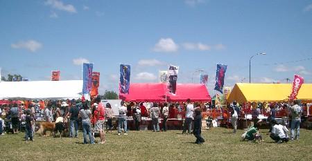 ドギーズ・フェスティバル2007