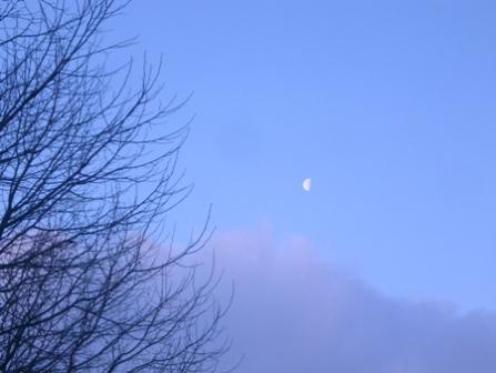 7時前、まだお月さまが。