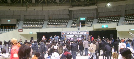 WanWanフェスティバル