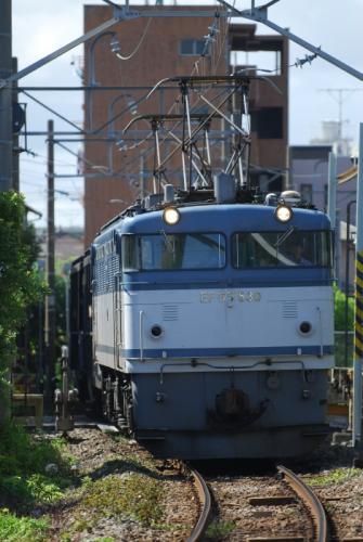 DSC_0175-s.jpg