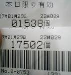 2007.1.29.jpg