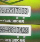 DVC00031.jpg