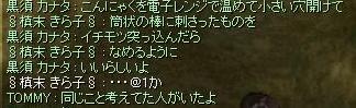 20060812224226.jpg