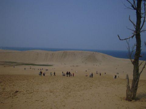 日本の砂漠