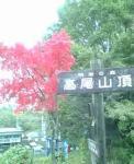 20061105-5.jpg