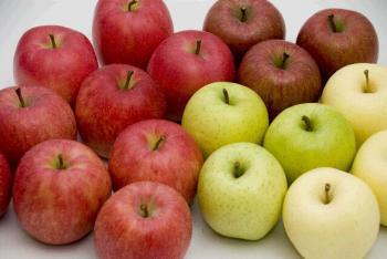 いろとりどりのりんごたち