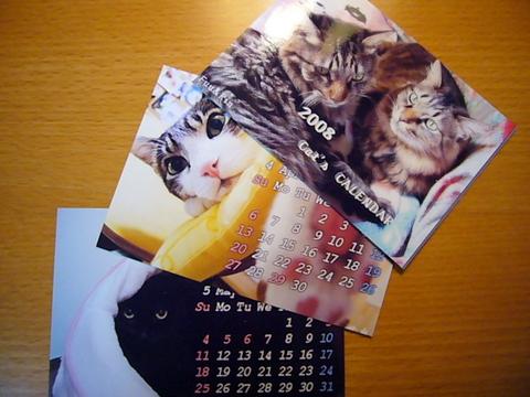 猫カレンダー2