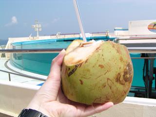 椰子の実ジュース!