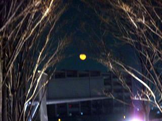 ダークオレンジの月