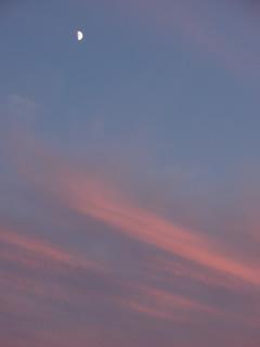 071020上弦の月